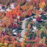 Image of a neighborhood fall landscape scene.